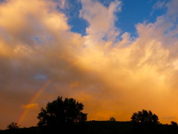 Rain / Rainbow