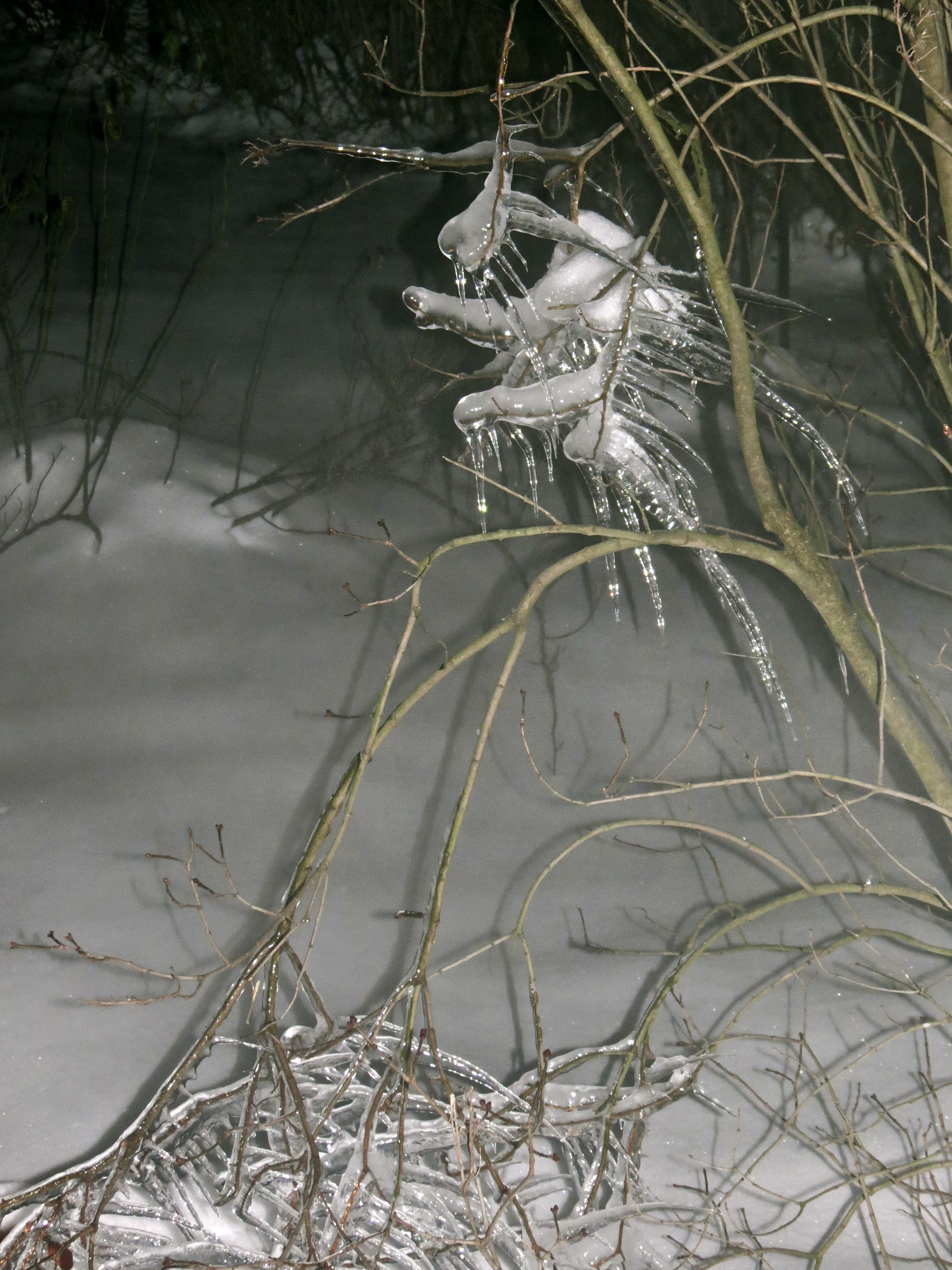 Winter Faery, Frozen Soul